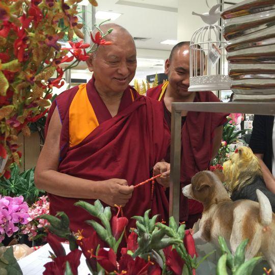 lama-zopa-rinpoche-flowers-singapore-20160307