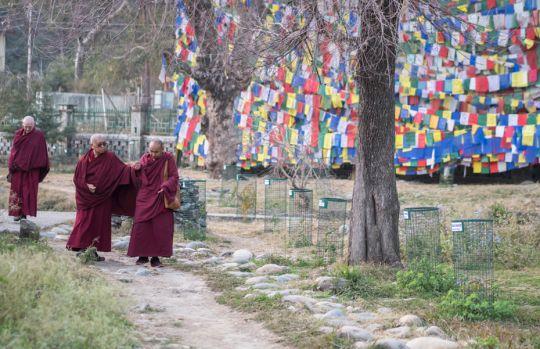 lama-zopa-rinpoche-tso-pema-korwa-india-201801