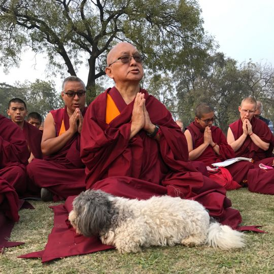 lama-zopa-rinpoche-sarnath-201701