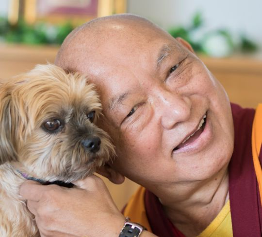 lama-zopa-rinpoche-and-dog-mahamudra-adelaide-201805