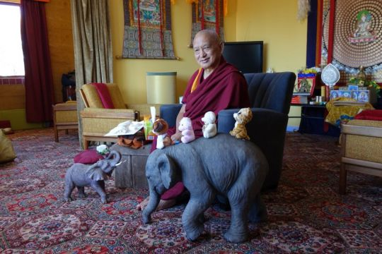 Lama Zopa Rinpoche with elephant in Bendigo Oct 10 2014 by Ven. Roger Kunsang