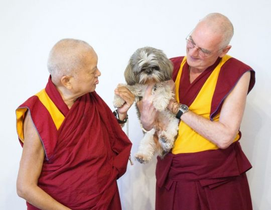 lama-zopa-rinpoche-and-venerable-roger-kunsang-with-small-dog-belonging-to-lara-gatto-photo-taken-at-iltk-pisa-italy-nov-2017-by-venerable-lobsang-sherab