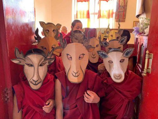 kopan-monastery-school-students-in-deer-costumes-for-play-performed-for-lama-zopa-rinpoche-birthday-at-kopan-monastery-december-2018-photo-by-kopan-monastery-school