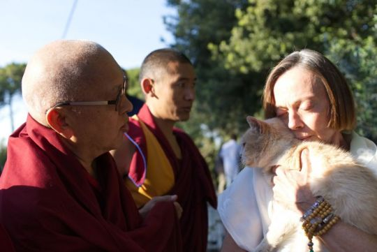 lama-zopa-rinpoche-reciting-mantras-for-a-very-sick-elderly-cat-october-2017-istitut-lama-tzong-khapa-pisa-italy-by-ven-lobsang-sherab