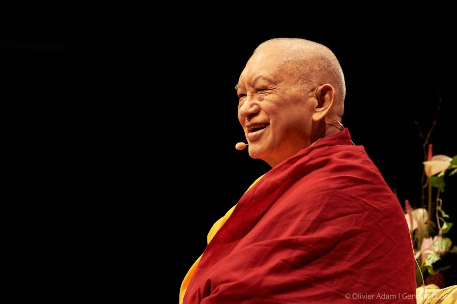 Take a Look! Charity to Ants - FPMT