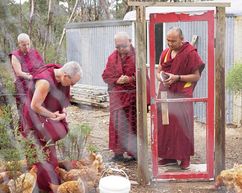 The Best Way to Develop Bodhichitta