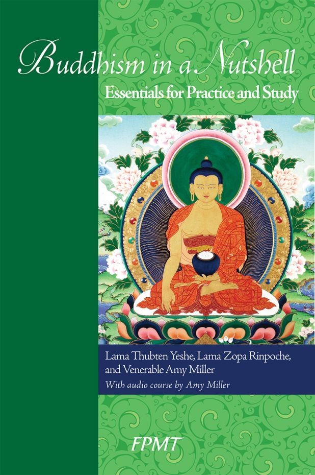 Take a Look! Buddhism in a Nutshell: Essentials for Practice and Study