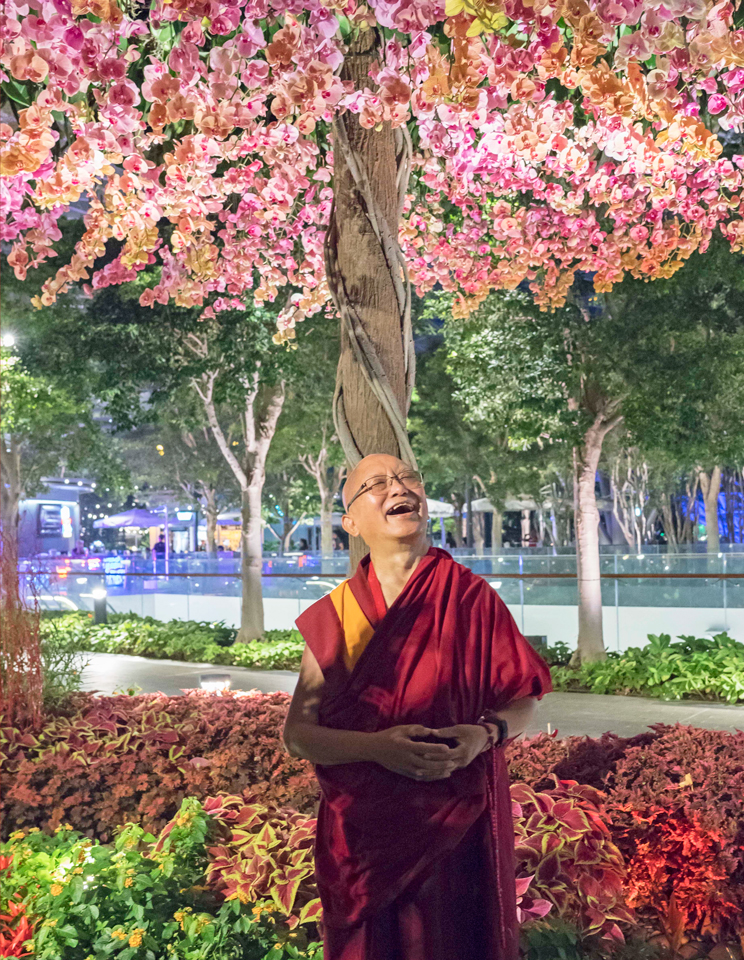 Lama Zopa Rinpoche in Photos!
