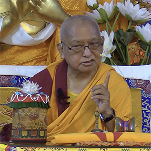 Rinpoche Available Now