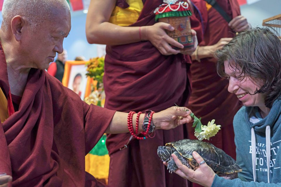 Lama-Zopa-Rinpoche-blessing-turtle-Moscow-2019