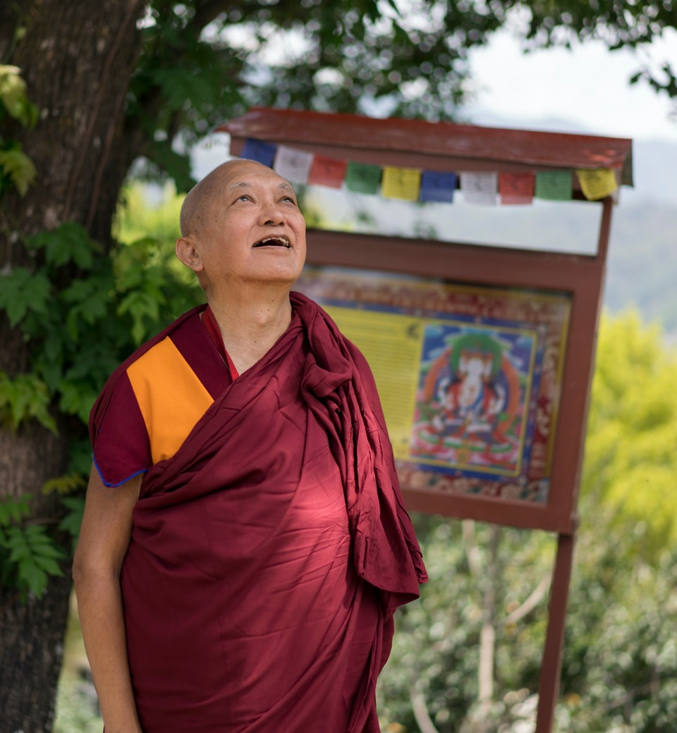 All the Problems in the World, Including the Coronavirus, Are Telling Us to Practice Dharma