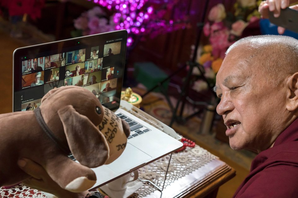rinpoche on a zoom call with plush toy