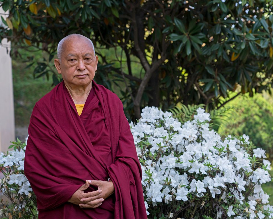 lama zopa rinpoche standing next to a blooming shrub with white flowers