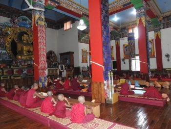 Meals Offered to Shalu Monastery for the Third Consecutive Year
