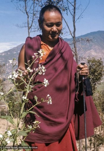 Lama Yeshe walking outside holding a flower and a walking stick with hills in the background