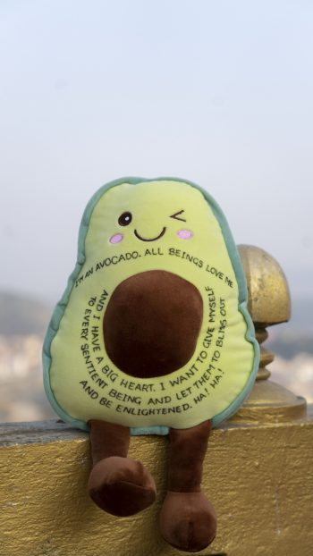 Stuffed avocado plush toy with Dharma message sitting on banister with Kathmandu in the background