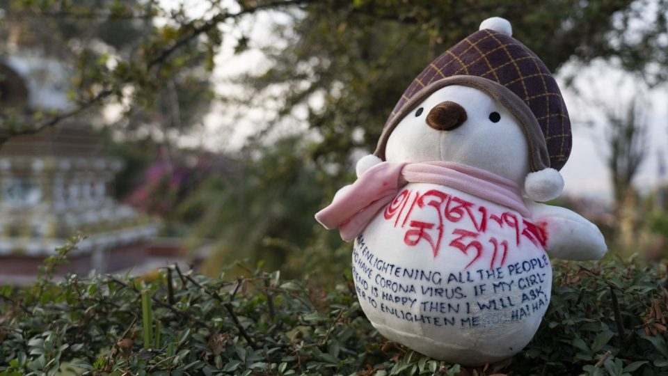 Stufffed plush toy with Dharma message in garden