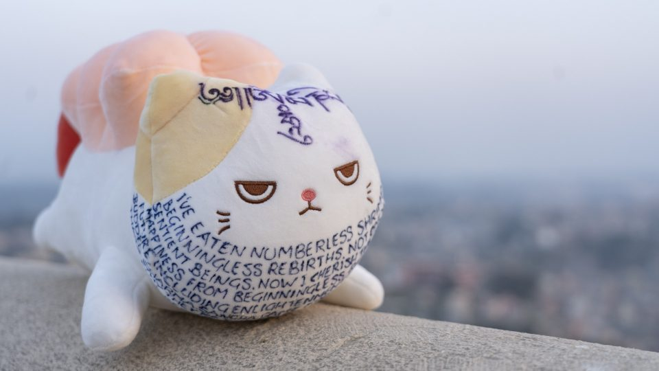 "Stuffed ""shrimp cat"" plush toy with Dharma message sitting on banister with Kathmandu in the background"