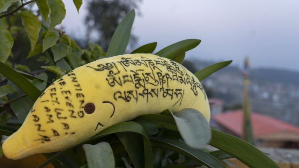 Stuffed plush banana toy with Dharma message in tree