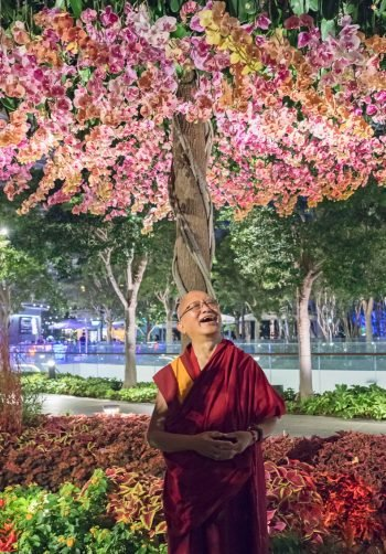 Lama Zopa Rinpoche laughing under a blossoming tree at night
