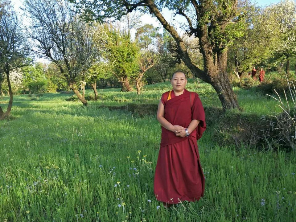 a Tibetan nuns standing in a green meadow with trees in the backgroun