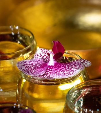 close up photo of a orchid blossom floating in a bowl filled with saffron water