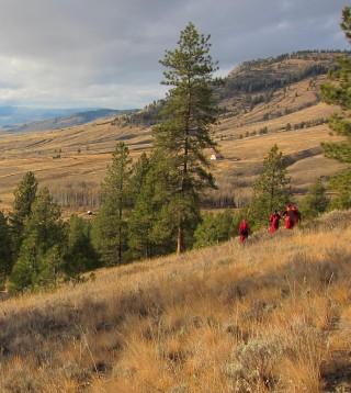 The Amitabha Pure Land retreat land in Washington State.