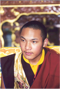 Karmapa teachings online dating