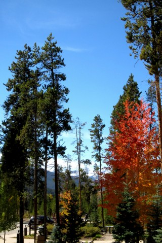 The view outside the conference venue, Keystone, Colorado, US, October 2014. Photo by Donna Lynn Brown.