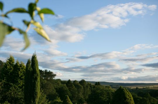 View from Land of Joy. Photo by Fiona Oliver.