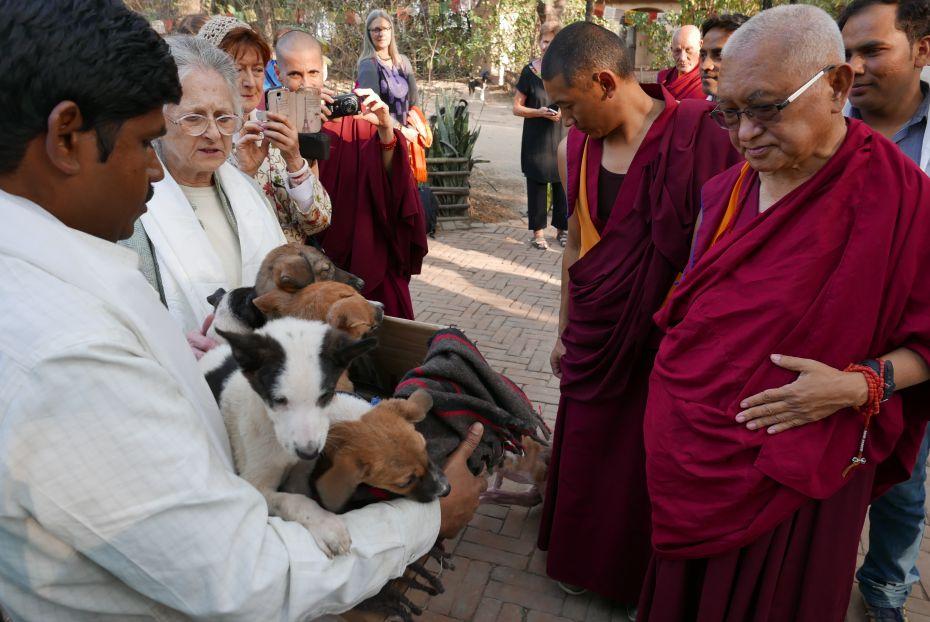Lama Zopa Rinpoche At Maitri Charitable Trust