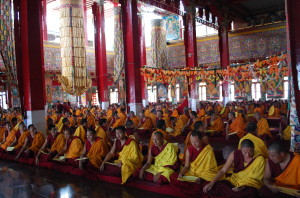 Monks at Sera Mey Monastery offering puja.