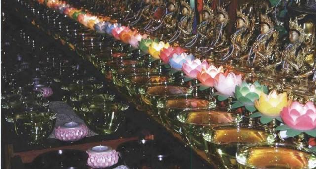 Water bowls