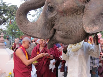 """""""Practicing Dharma is protecting yourself, cherishing others is loving yourself …."""" Lama Zopa Rinpoche"""