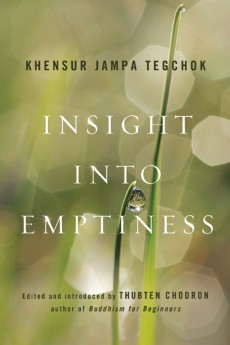 Review: Insight into Emptiness