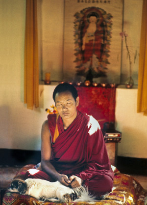 Lama Yeshe with his dog Dolma, 1971. Photo by Fred von Allmen.