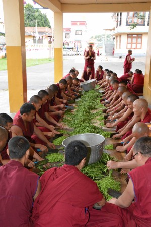 On a rotating basis, monks help work in the Sera kitchen to chop, cook and clean. Photo by Sera Je Food Fund.
