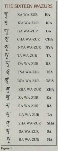 Wazurs
