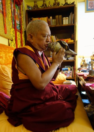 Rinpoche blowing the conch during the Lama Chopa puja on tsok day  (Rinpoche is doing the tsok according to Indian time), November 12, 2013. Photo by Ven. Roger Kunsang.