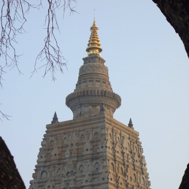 The Mahabodhi Stupa with gold offering on the pinnacle, Bodhgaya, India, January 2014. Photo by Ven. Roger Kunsang.