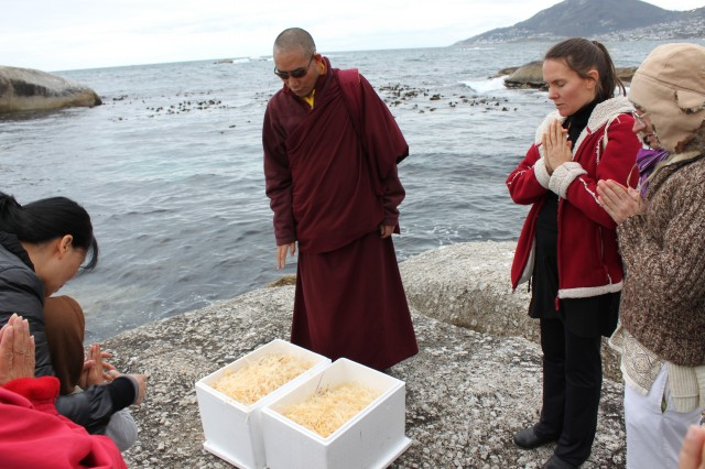 Chamtrul Rinopche with Buddhist students in Cape Town, South Africa. Photo courtesy of Nina McNaught.