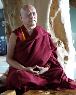 Lama Zopa Rinpoche meditating under a tree in gardens in Singapore, March 2013. Photo by Ven. Roger Kunsang.