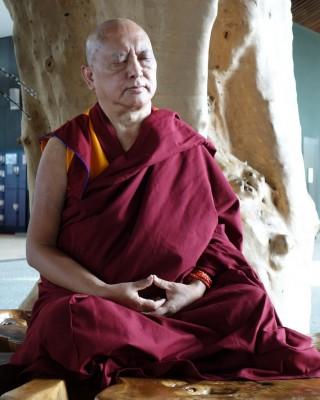 Lama Zopa Rinpoche meditatingunderatreeingardensinSingapore, March 2013. Photoby Ven. RogerKunsang.