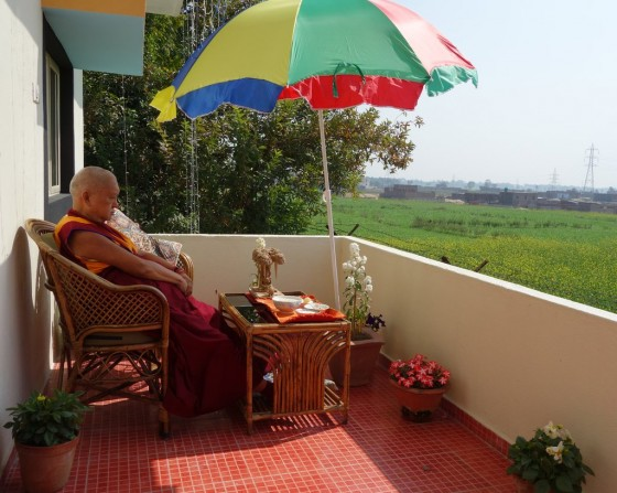 Lama Zopa Rinpoche offering his breakfast on the backside of Root Institute, Bodhgaya,India. In the background, all the mustard seed plants are in bloom. February 2014. Photo by Ven. Roger Kunsang.