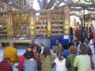 Under the shade of the Bodhi tree, Ven. Sarah Thresher shared the story of the Buddha's path to enlightenment, Mahabodhi Stupa, Bodhgaya, India, March 2014. Photo courtesy of Ven. Lozang Khadro.