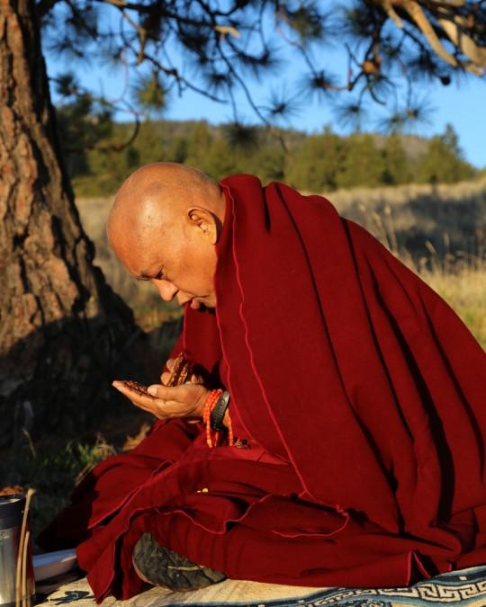 Lama Zopa Rinpoche at Buddha Amitabha Pure Land, Riverside, Washington, US, April 2014. Photo by Ven. Thubten Kunsang.