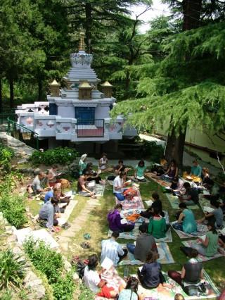 Students read the Golden Light Sutra in front of Lama Yeshe's Stupa, Tushita Meditation Centre, Dharamsala, India, June 13, 2014. Photo courtesy of Tushita Meditation Centre.