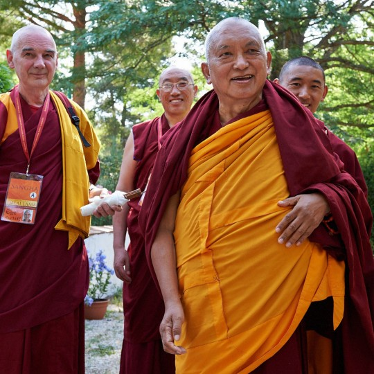 Lama Zopa Rinpoche with (from left) Ven. Roger Kunsang, Geshe Jampa Gelek and Ven. Sangpo going to hear His Holiness the Dalai Lama at Istituto Lama Tzong Khapa, Italy, June 13, 2014. Photo by Olivier Adam.
