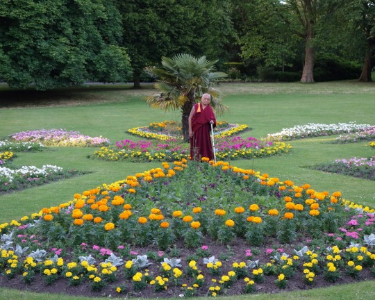 """Lama Zopa Rinpche in a park in Leeds offering all the flowers to the """"gurus and buddhas, statutes, stupas and scriptures, etc. etc.,"""" according to Ven. Roger Kunsang, UK, July 2014. Photo by Ven. Roger Kunsang."""