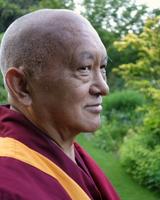 Lama Zopa Rinpoche during his visit to the UK, July 2014. Photo by Ven. Roger Kunsang.